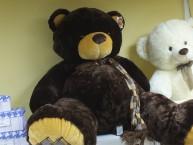 Медведь в шарфе большой муз. - 1цв.